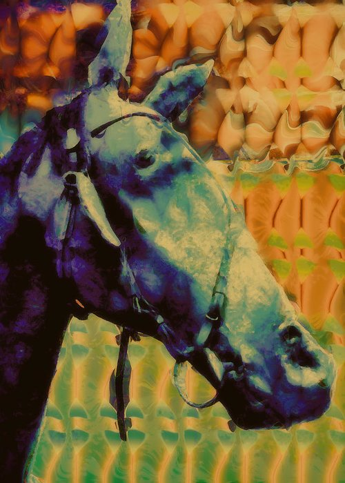 Horse Portrait Greeting Card featuring the digital art Billy Blue by Devalyn Marshall