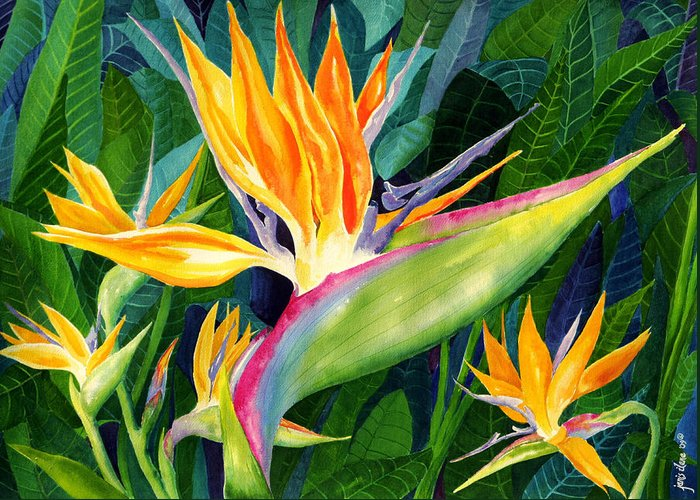 Flower Paintings Greeting Card featuring the painting Bird-of-paradise by Janis Grau