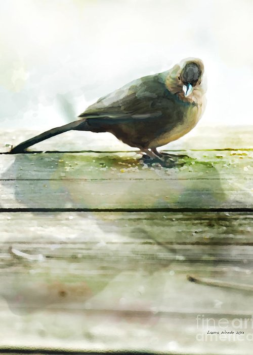 Bird Images Greeting Card featuring the painting Bird On The Deck by Artist and Photographer Laura Wrede
