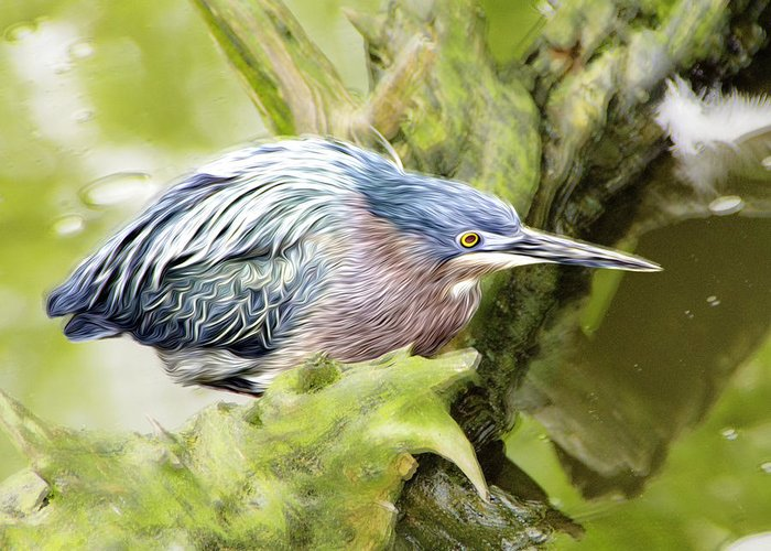 Bird Greeting Card featuring the photograph Bird Whirl2 by James Ekstrom