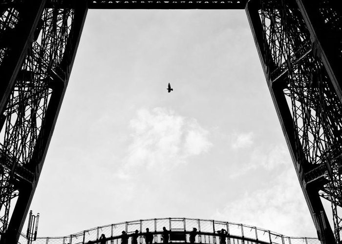Eiffel Tower Greeting Card featuring the photograph Birds-eye View by Dave Bowman