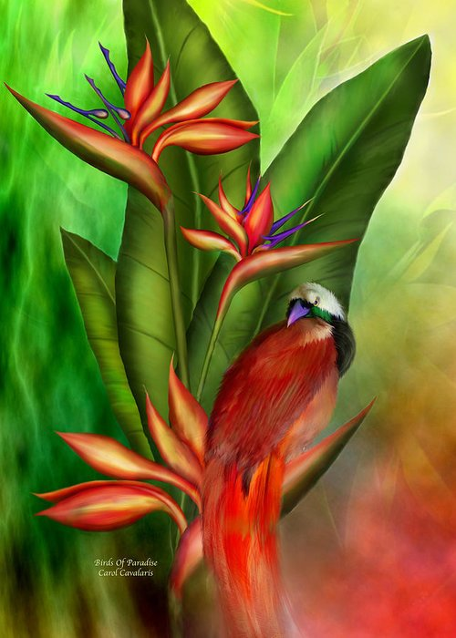 Bird Of Paradise Plant Greeting Card featuring the mixed media Birds Of Paradise by Carol Cavalaris