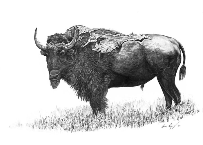 Bison Greeting Card featuring the painting Bison by Aaron Spong