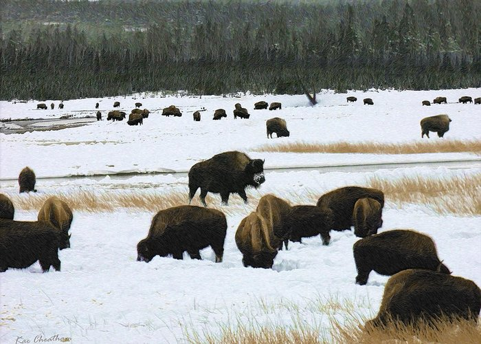 Wild Bison Greeting Card featuring the digital art Bison Cows Browsing by Kae Cheatham