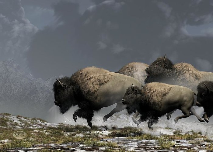 Bison Digital Art Greeting Cards