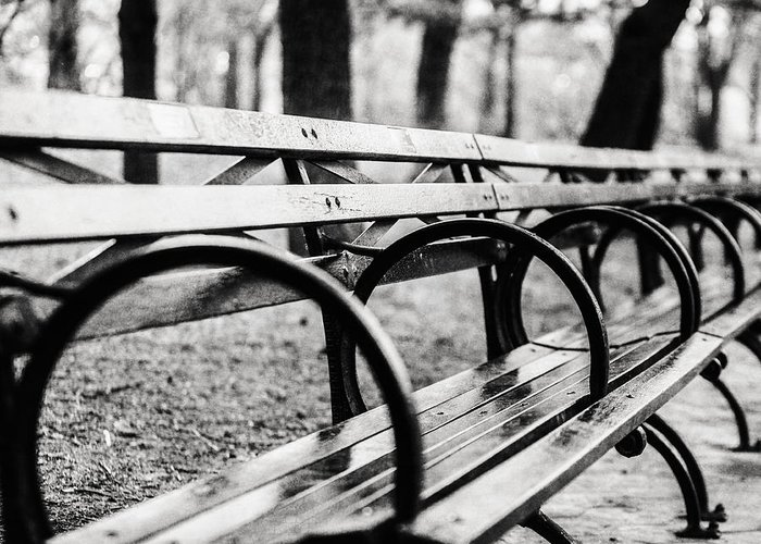 Black And White Central Park Bench In New York City Greeting Card