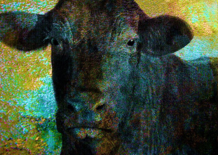 Cow Greeting Card featuring the mixed media Black Angus by Ann Powell