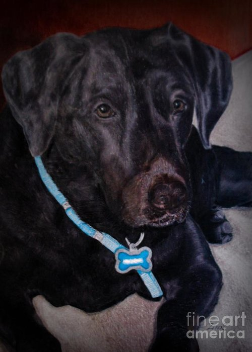 Labrador Greeting Card featuring the drawing Black Labrador Retriever Drawing by Zina Stromberg