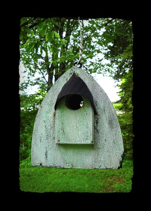 Bird House Greeting Card featuring the photograph Bless This Nest by Jane Alexander