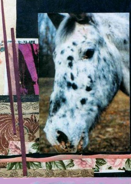 Horse Greeting Card featuring the mixed media Blotter by Mary Ann Leitch