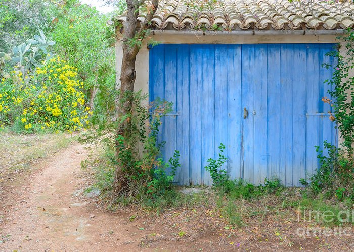 Architectural Greeting Card featuring the photograph Blue Doors And Yellow Flowers by Ingela Christina Rahm
