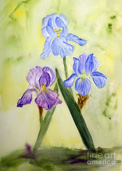 Blossom Greeting Card featuring the painting Blue Iris by Donna Walsh