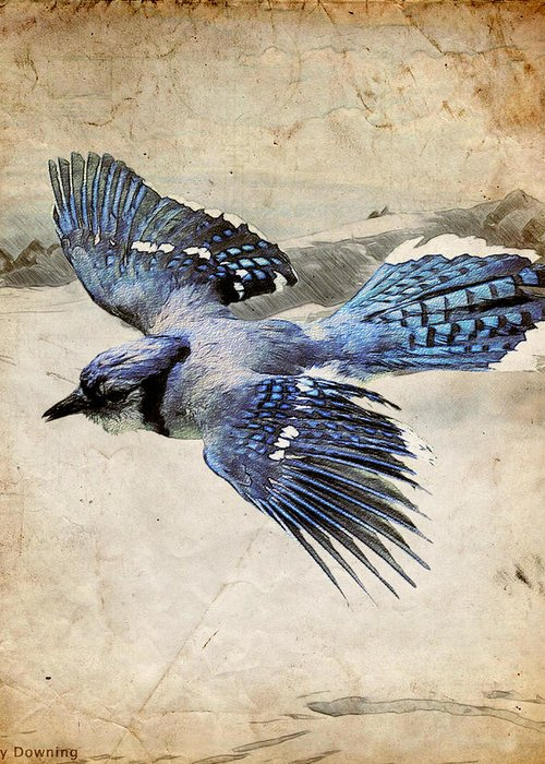 Blue Jay Greeting Card featuring the digital art Blue Jay In Flight by Ray Downing