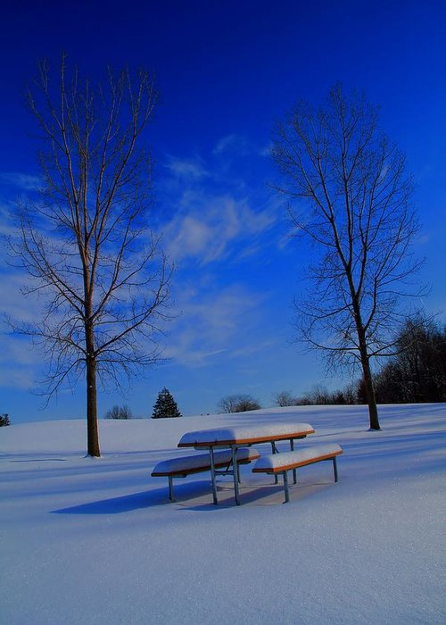 Blue On A Snowy Day Greeting Card featuring the photograph Blue On A Snowy Day by Dan Sproul