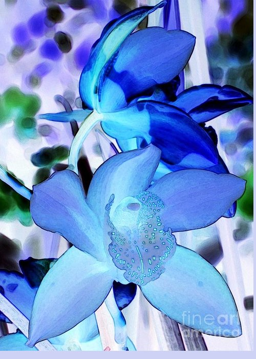 Orchid Greeting Card featuring the photograph Blue Orchids by Kathleen Struckle