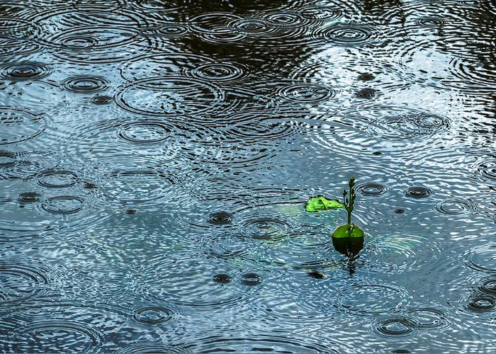 Background Greeting Card featuring the photograph Blue Rain - Featured 3 by Alexander Senin