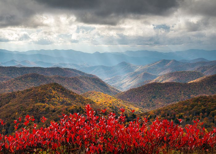 Autumn Greeting Card featuring the photograph Blue Ridge Parkway Fall Foliage - The Light by Dave Allen
