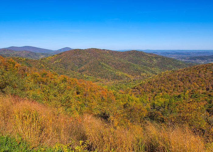 Landscape Greeting Card featuring the photograph Blue Ridge Vista by John M Bailey