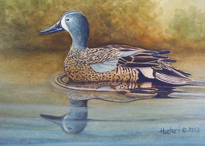 Rick Huotari Greeting Card featuring the painting Blue Winged Teal by Rick Huotari