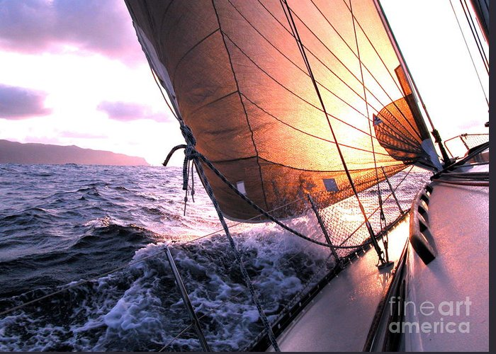 Boats Greeting Card featuring the photograph Boats Wing by Boon Mee