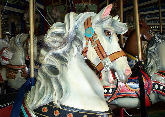 Carousel Greeting Card featuring the photograph Bob by Barbara McDevitt