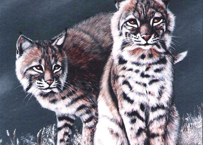 Bobcat Greeting Card featuring the painting Bobcats In The Hood by DiDi Higginbotham