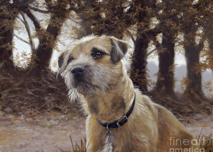 Dog Paintings Greeting Card featuring the painting Border Terrier In The Woods by John Silver