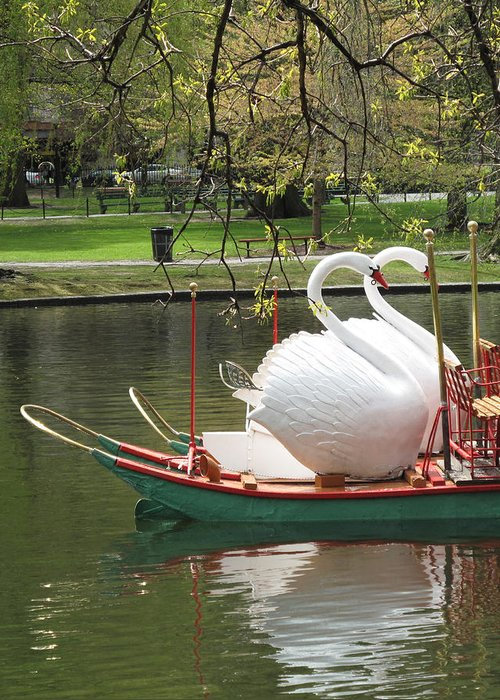 Swan Boats Stationery