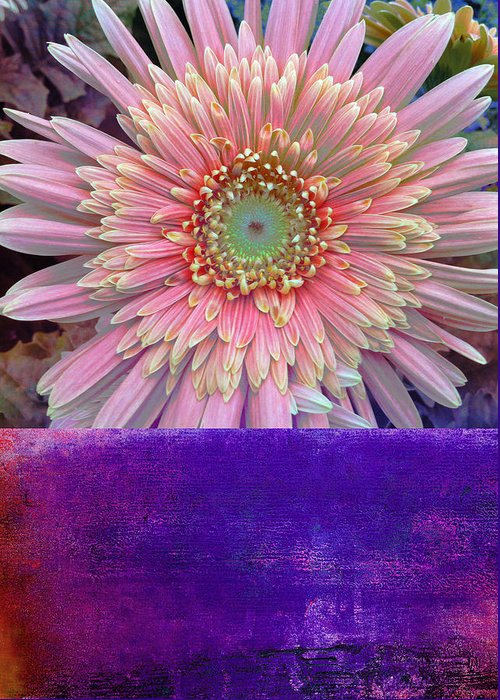 Canvas Art Greeting Card featuring the mixed media Botanical Elements IIi by Ricki Mountain
