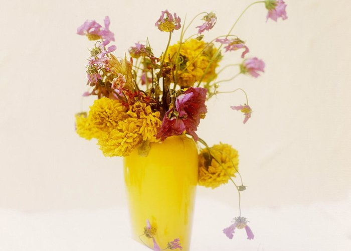 Blooming Blooms Bloom Blossoming Blossoms Blossom Bouquets Bouquet Bunch Of Flowers Bunch Cut Flowers Cut Flower Decorated Decorations Decoration Decorative Different Differing Diverse Floral Arrangement Flower Arrangements Flower Arrangement Flower Bouquet Flower Decorations Flower Decoration Flowering Flowers Flower Vases Flower Vase Flower Nobody Studio Shots Studio Shot Varied Various Varying Vases Vase Greeting Card featuring the photograph Bouquet Of Flowers by Bernard Jaubert