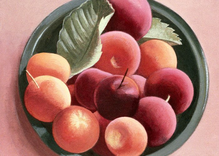 Plum Greeting Card featuring the painting Bowl Of Fruit by Tomar Levine