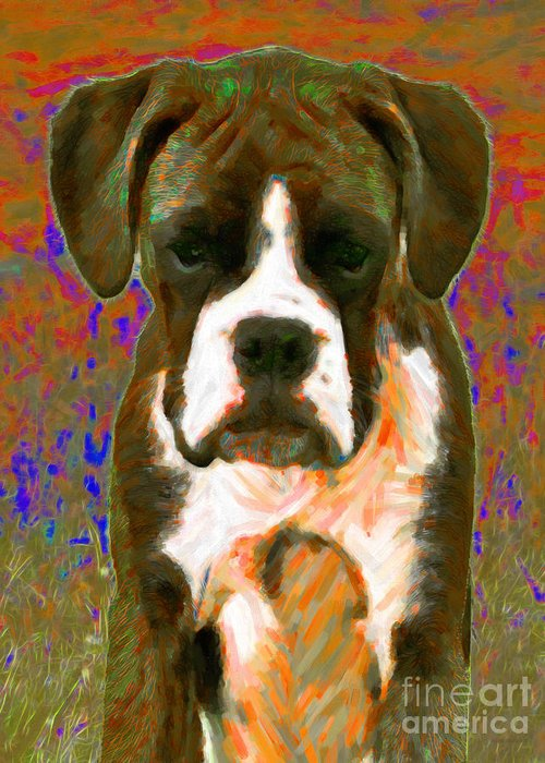 Animal Greeting Card featuring the photograph Boxer 20130126v1 by Wingsdomain Art and Photography