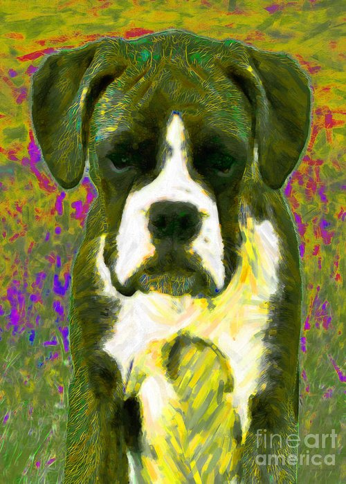 Animal Greeting Card featuring the photograph Boxer 20130126v2 by Wingsdomain Art and Photography