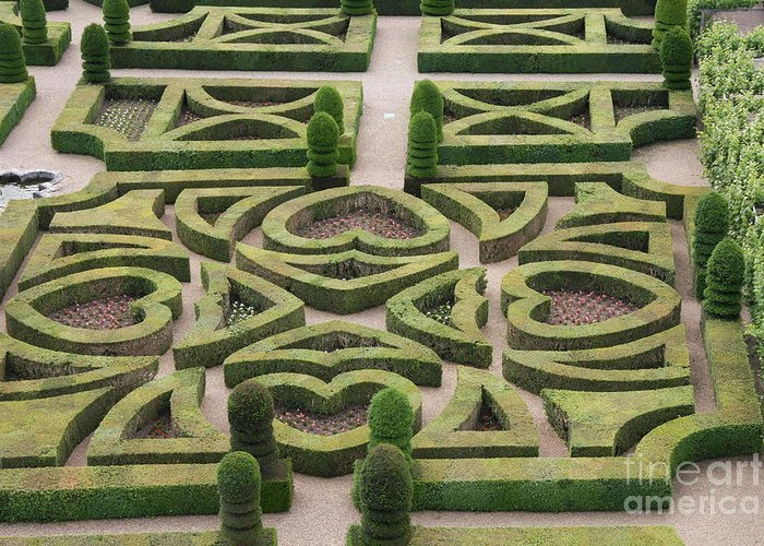 Garden Greeting Card featuring the photograph Boxwood Garden - Chateau Villandry by Christiane Schulze Art And Photography