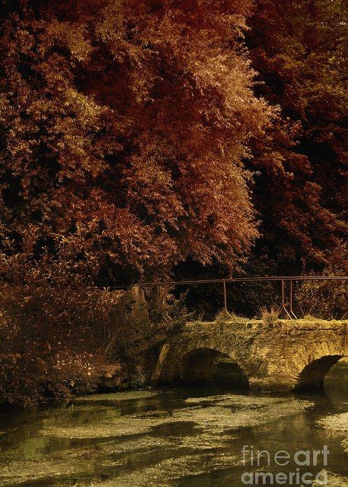 Bridge Greeting Card featuring the photograph Bridge by Margie Hurwich