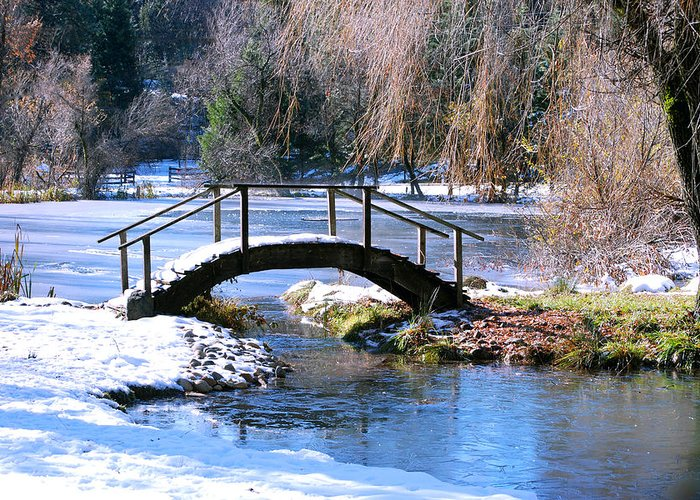 Snow Greeting Card featuring the photograph Bridge Over Ice N Snow by William Havle