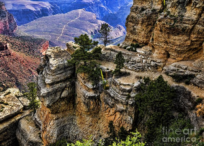 Usa Greeting Card featuring the photograph Bright Angel Trail by Brenda Kean