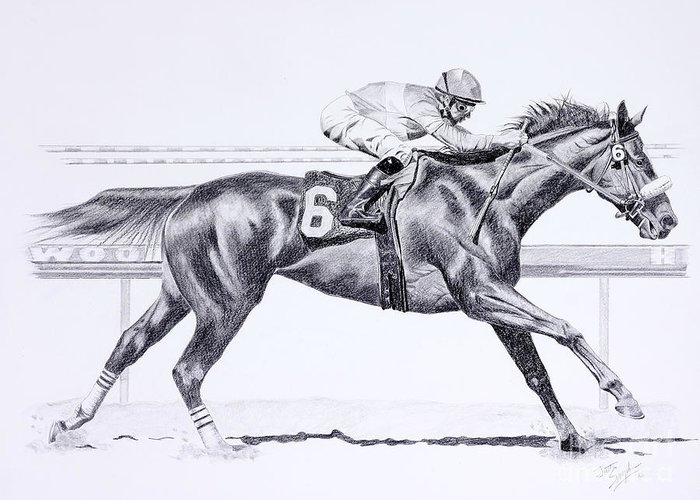 Bring On The Race Zenyatta Greeting Card for Sale by
