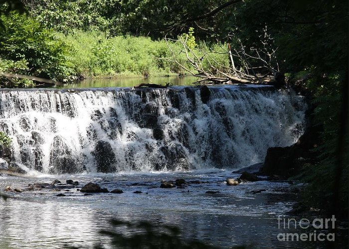 Bronx River Waterfall Greeting Card featuring the photograph Bronx River Waterfall by John Telfer