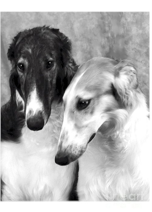 Dog Greeting Card featuring the digital art Brother And Sister Borzoi by Maxine Bochnia