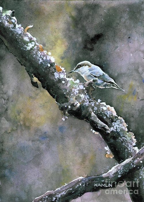 Bird Greeting Card featuring the painting Brown-headed Nuthatch by Steve Hamlin