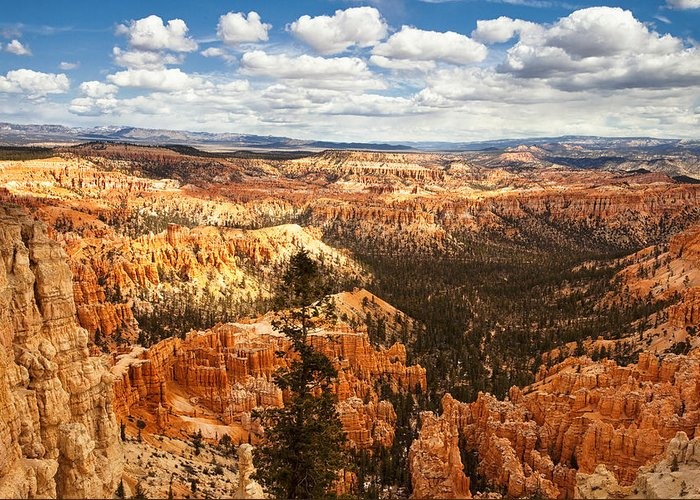 National Park Greeting Card featuring the photograph Bryce Canyon by Andrew Soundarajan