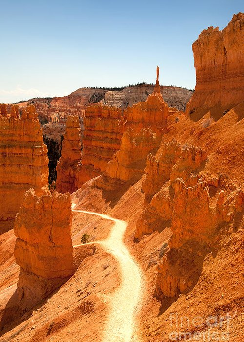 America Greeting Card featuring the photograph Bryce Canyon Trail by Jane Rix