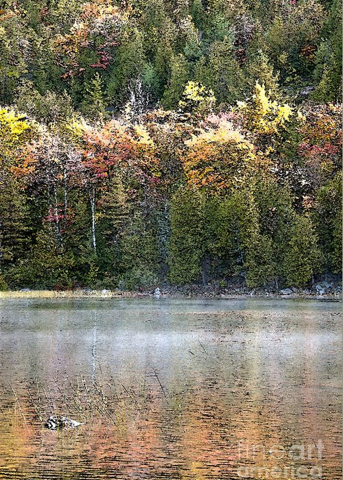 Bubble Pond Greeting Card featuring the photograph Bubble Pond Acadia National Park by Glenn Gordon