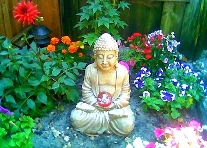 Buddha Greeting Card featuring the photograph Backyard Buddha by Steed Edwards