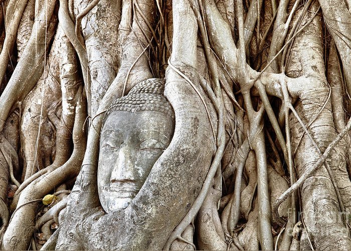 Asia Greeting Card featuring the photograph Buddha Head In Tree Wat Mahathat Ayutthaya Thailand by Fototrav Print