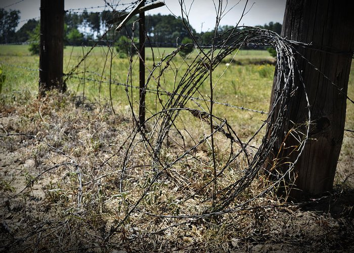 Texas Greeting Card featuring the photograph Bundled Barbed Wire by Richelle Munzon