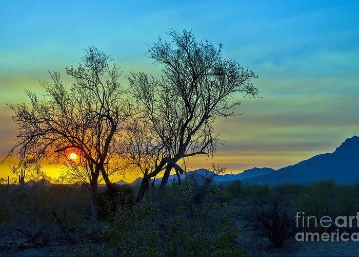 Arizona. Desert Plants Saguaro Greeting Card featuring the photograph Burning Brush by Brian Lambert