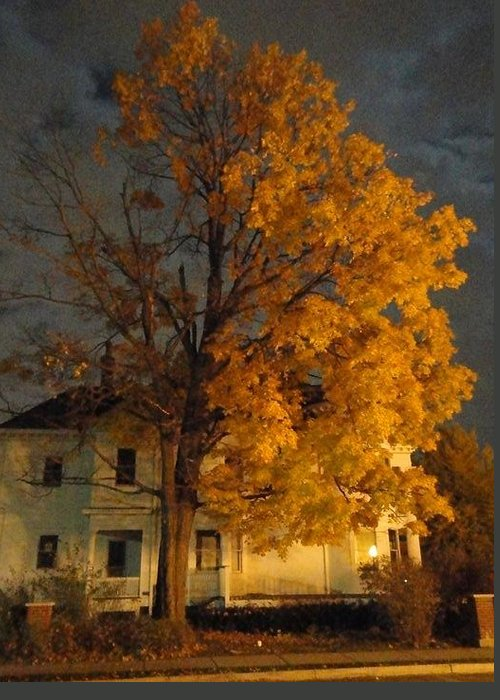Guy Ricketts Photography Greeting Card featuring the photograph Burning Leaves At Night by Guy Ricketts