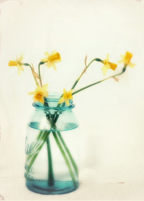 Daffodil Greeting Card featuring the photograph But I Love You Still by Amy Tyler